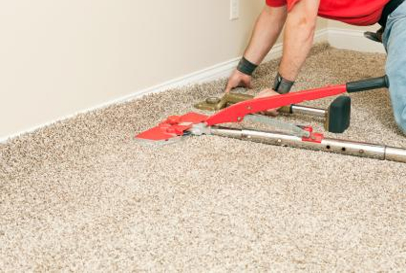 Carpet Cleaning in Riverview FL, Home,